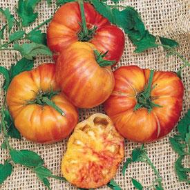 rei do tomate tomate big rainbow 20 sementes frete gr tis. Black Bedroom Furniture Sets. Home Design Ideas